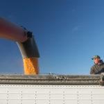 grain bin hazards - flowing grain