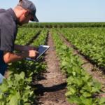 grower soil sampling