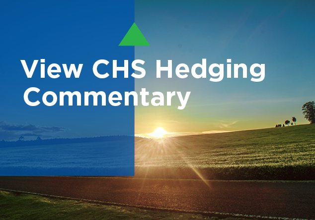 View CHS Hedging